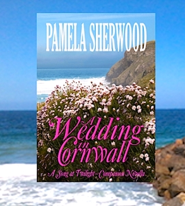 WeddingInCornwallGraphic